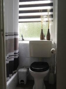 De wc en de douche